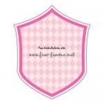 ピンク色のシールド・ラベルフレーム