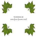 緑色の楓の葉っぱイラストの四隅フレーム・枠